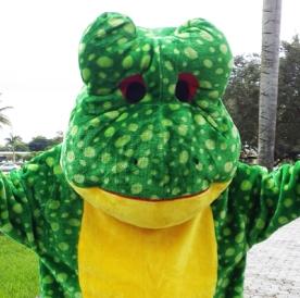 frog, amphibian, fairy tale, costume